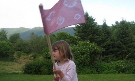 Sobre as Bandeiras que Carregamos