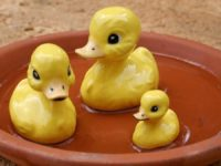 Sobre Ter Vários Filhos e a Teoria do Pato
